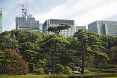 整洁的日本公园 库存照片