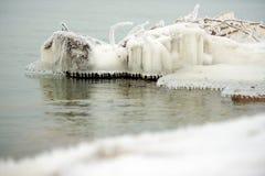冻结的树枝在水中 免版税库存图片
