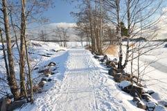 冻结的横向冬天 免版税库存照片