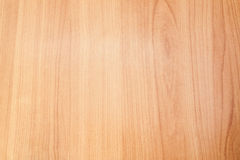 轻的橡木木纹理 图库摄影
