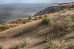 死的沙丘在Neringa,立陶宛 免版税库存照片