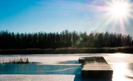 冻结的河季节结构树冬天 免版税图库摄影
