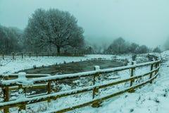冻结的湖降雪 免版税库存照片