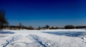 冻结的湖lanscape 库存图片