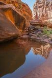 水的猎人峡谷供徒步旅行的小道默阿布犹他水池  免版税库存图片