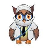的猫头鹰博士准备好检查 免版税库存照片