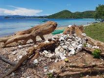 死的珊瑚香蕉海岛Coron巴拉望岛 图库摄影