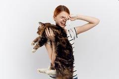 轻的白色背景的美丽的少妇拿着一只猫,过敏 库存照片