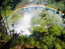 水的看法在Cataratas del伊瓜苏公园下跌 免版税库存照片