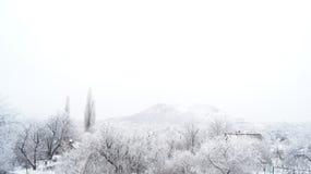 冻结的看法 免版税图库摄影