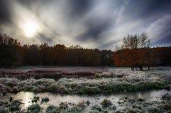 冻结的秋天 图库摄影