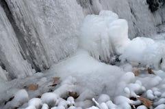 冻结的秋天 库存图片