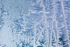 冻结的窗口装饰框架样式 冰开花纹理 冬天静物画摄影 特写镜头,浅深度  图库摄影