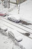 年的第一雪 免版税库存图片
