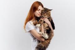 轻的背景的一名妇女拿着一只猫,缅因浣熊,对宠物的过敏 免版税图库摄影