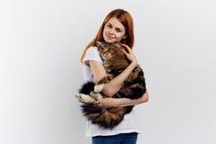 轻的背景的美丽的妇女拿着在她的胳膊的一只猫 库存照片