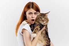 轻的背景的美丽的少妇拿着一只猫,情感 库存照片