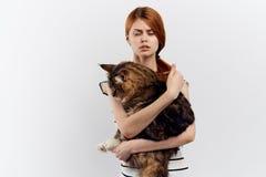 轻的背景的美丽的少妇拿着一只猫,过敏 免版税库存照片