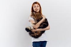 轻的背景的美丽的少妇拿着一只猫,过敏 免版税库存图片