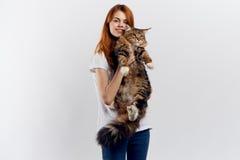 轻的背景的美丽的少妇拿着一只猫,过敏 库存图片
