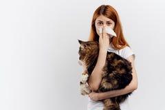 轻的背景的美丽的少妇拿着一只猫,过敏 免版税图库摄影