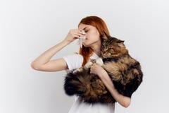 轻的背景的年轻美丽的妇女拿着一只宠物,猫,过敏 免版税图库摄影