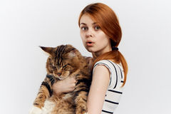 轻的背景的年轻美丽的妇女拿着一只猫,宠物,情感 库存图片