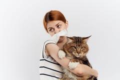 轻的背景的年轻美丽的妇女拿着一只猫,对宠物的过敏 免版税库存照片