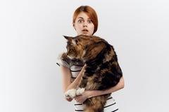 轻的背景的年轻美丽的妇女拿着一只猫,情感,宠物 免版税库存图片
