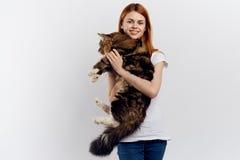 轻的背景的年轻美丽的妇女拿着一只猫,情感,微笑 图库摄影