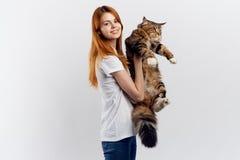 轻的背景的年轻美丽的妇女拿着一只猫,过敏 免版税库存图片
