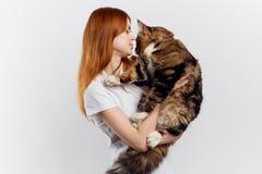 轻的背景的年轻美丽的妇女拿着一只猫,过敏 免版税库存照片