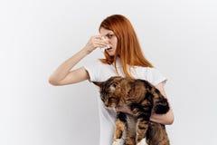 轻的背景的年轻美丽的妇女拿着一只猫,过敏 免版税图库摄影