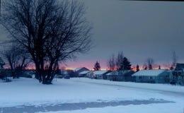 冻结的草横向日落水冬天 免版税库存图片