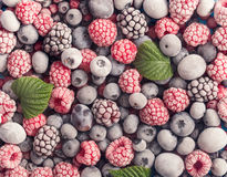 冻结的莓果背景 免版税库存图片