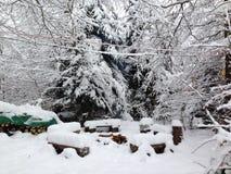 冻结的营火 图库摄影