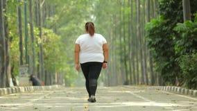 的超重妇女走在公园的后面观点 股票视频