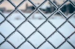 冻结的金属网络。 库存图片