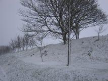 轻的降雪在一个冬日 库存照片