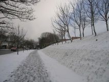 轻的降雪在邻里在一个冬日 免版税图库摄影