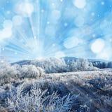 冻结的风景 免版税库存图片