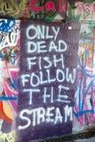 仅死的鱼跟随小河-墙壁街道画 免版税库存图片