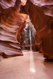 轻的轴或射线羚羊峡谷亚利桑那 库存图片