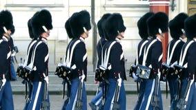 皇家丹麦的卫兵 影视素材