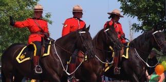 皇家加拿大人登上的警察RCMP 库存图片