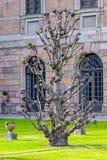 皇家城堡的天猫座庭院在斯德哥尔摩,瑞典 图库摄影