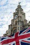 皇家大厦的肝脏 免版税库存图片