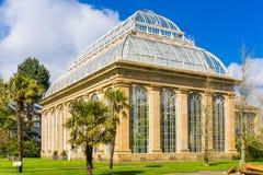 皇家植物园的玻璃温室在公园Edinbu 免版税库存照片