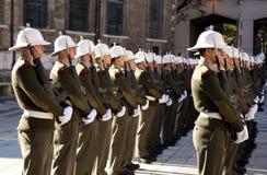 皇家海军陆战队员 免版税库存照片