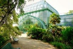 皇家温室,王宫,拉埃肯,布鲁塞尔,比利时 免版税库存照片